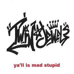 Twin Jewels - Ya'll Is Mad Stupid album mp3